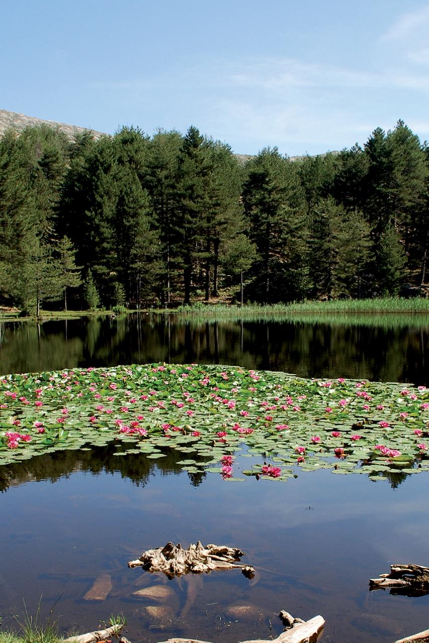 Lac de Crenu